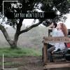 Say You Won't Let Go by Mahogany LOX & Pete Mata