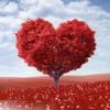 Lover Dose (Demo)