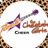 Rockstar Cheer The Cheetah Girls  2017