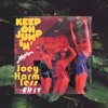 Musique - Keep on Jumpin' (Joey Harmless Edit)
