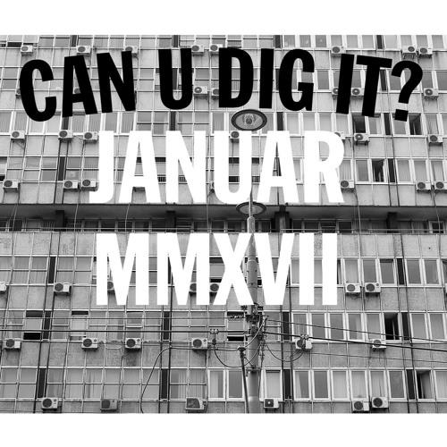 Can U Dig It - January 2017