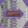 Sensei ft. Famous Dex