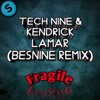 Tech Nine Ft. Kendrick Lamar - Fragile (Besnine Remix)
