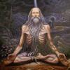 H.D. Goswami - The World of Patañjali / Yoga Sutras @ BKS Iyengar Yoga Studio