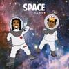 Space Prod. RAD