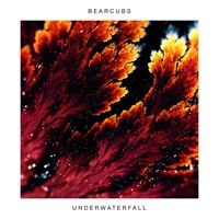 Bearcubs - Underwaterfall