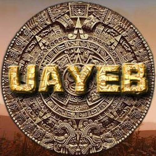 UAYEB - Ambience sound - Night Crickets