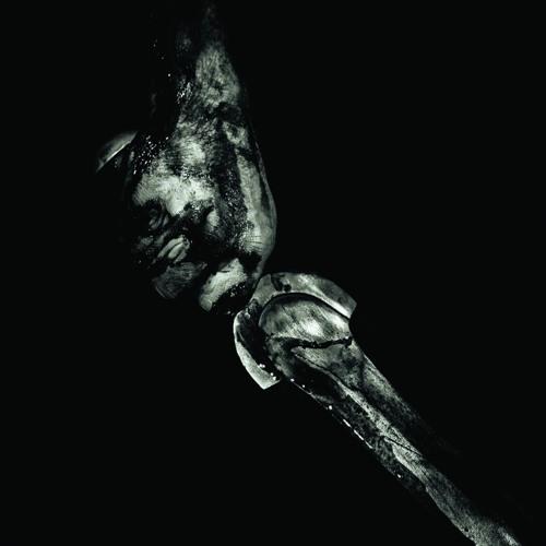 Consummation - The Weightless Grip of Fire