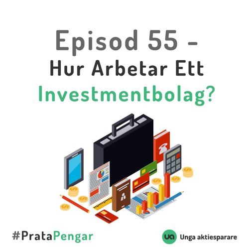 Episod 55 - Hur arbetar ett Investmentbolag?