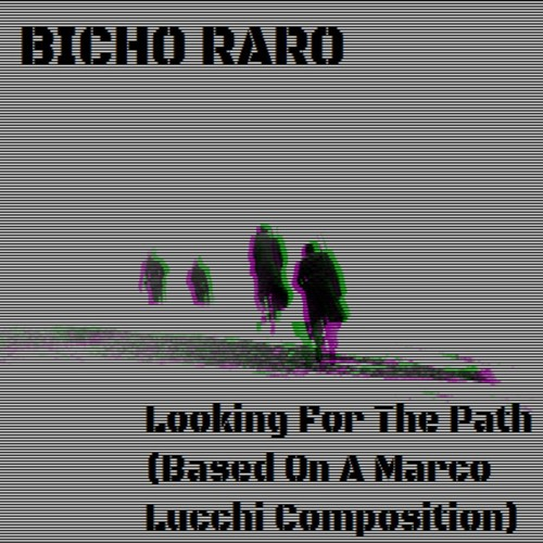 Bicho Raro - Looking For The Path (Based On A Marco Lucchi Composition)
