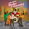 Under The Canopy [Prod. by Frank Edwards & Fiokee]