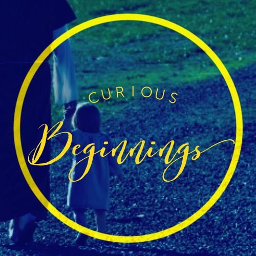 Curious Beginnings -- Luke 1-2