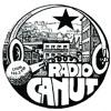 Emission Radio Canut du 15 janvier 2017
