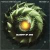 Natural Born Killers Feat. Shangri-La - Funk You (Original Mix)