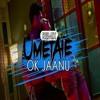 OK JAANU The Humma – Badshah, A.R. Rahman [ REMIX ]