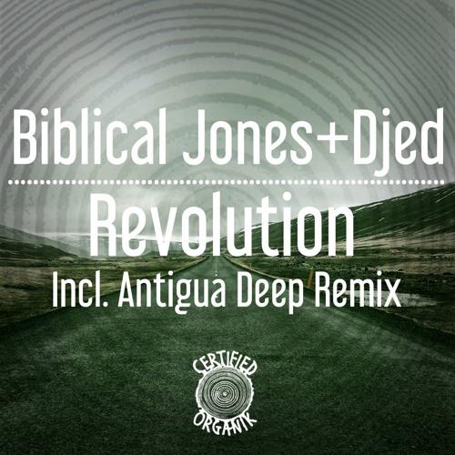 'Revolution' Featuring Biblical Jones