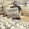 18 marcas de agua mineral fueron sacadas de la venta por el INAN