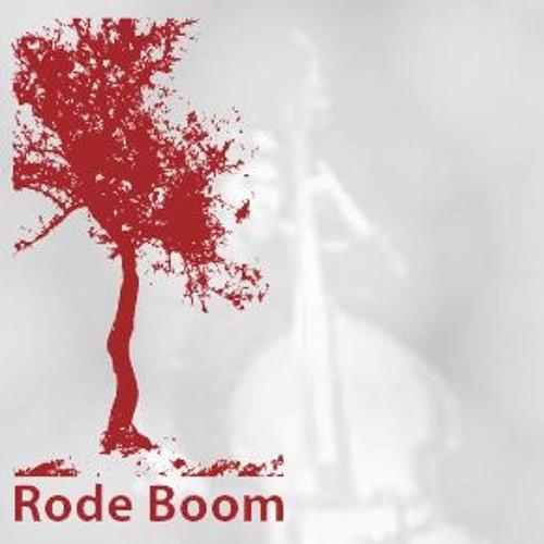 'la ville qui respire', Rode Boom