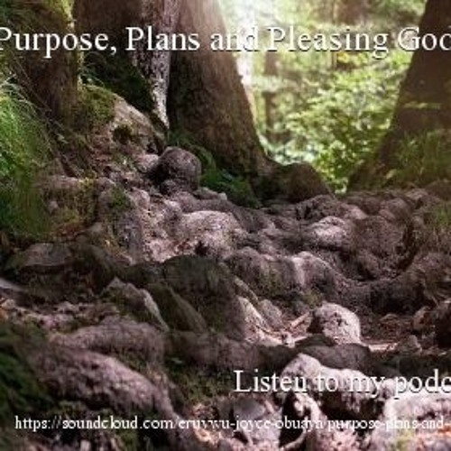 Purpose, Plans and Pleasing...
