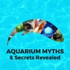 AM&SR Episode 04: 7 Kinds of Bacteria In Your Aquarium