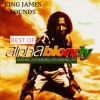 Alpha Blondy Bory Samory Album Cover