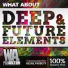 Deep & Future Elements | 12 Kits, 100+ Kicks, Presets & Drums