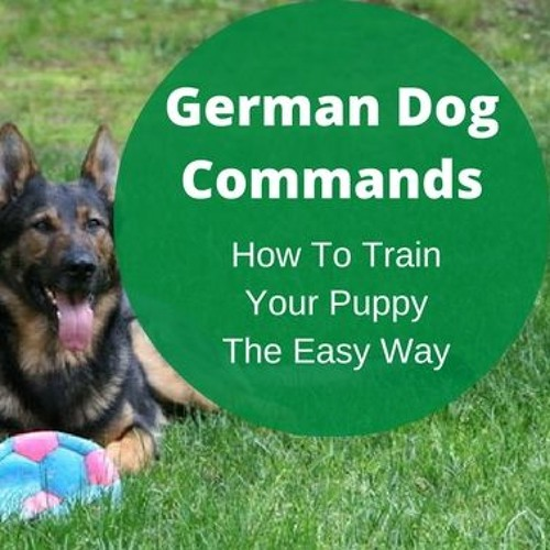 German Dog Commands (Audio Examples for Training)