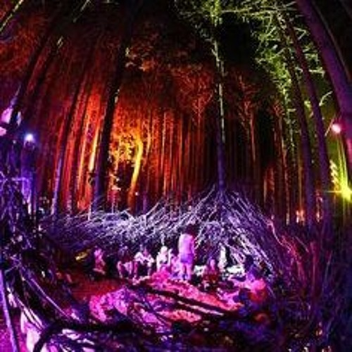 Psykelo Mix Promo Forest Style 2017.WAV