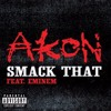 Akon - Smack That (Brad Couch Bootleg) *FREE DOWNLOAD*