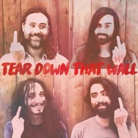 The Bright Light Social Hour - Tear Down That Wall