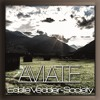 Eddie Vedder - Society (Aviate Remix)