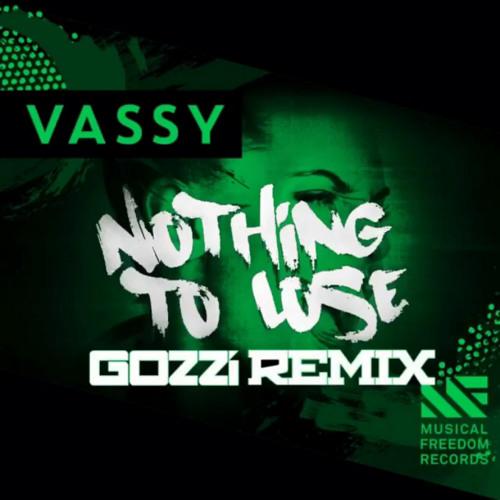 Nothing To Lose (GOZZI Remix) - Vassy (Prod. by Tiesto)