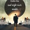 Frolov @ Soul Night 14.01.17 Module