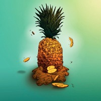 Amindi K. Fro$t, Tessellated & Valleyz ~ Pine & Ginger