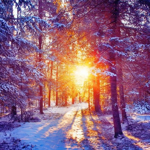 Winters Hope Mix (Ithaka Project) 2014