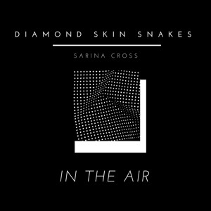 Diamond Skin Snakes ft. Sarina Cross  - In The Air  {FREE DOWNLOAD}