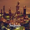 Suchmos - STAY TUNE (tsuppi もうgood night Edit)