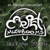 Carpet Mushrooms - Pieniądz Nie Umarł