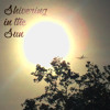 Shivering in the Sun [El Ten Eleven + Passion Pit + Local Natives]