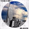 FUTURE IS NOW 3 BY NEIL RICHTER