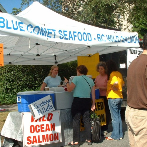 Sasha Berger - Blue Comet Seafood CSF