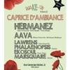 AAvA @ Caprice D'ambiance (Namur) 06122015 PART2