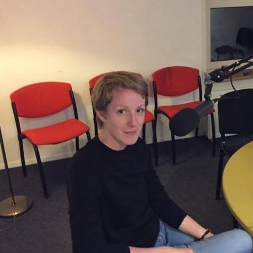2017 - 01 - 25 Anne Petterson over haar proefschrift 'Eigenwijs vaderland'