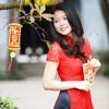 Bai Tango Mua Xuan - Quang Phuc