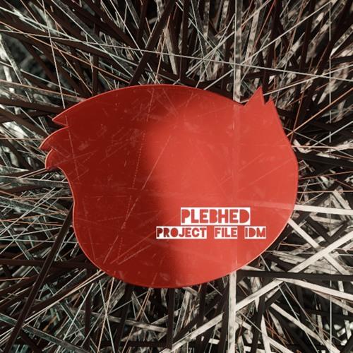 "PLEBHED - ""project file IDM"""