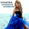Shakira Whenever Wherever Luvego Bootleg Edit Mp3