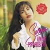 Selena Quintanilla - Tus Desprecios cover en vivo