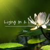 drbtea - Lying On A Lily Pad (Original Mix)