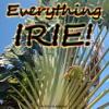 Everything IRIE - Sennid & The Echo Lair