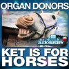 Ket Is For Horses - Organ Donors (Joey Riot Vs Hyper Activ Remix) PREVIEW